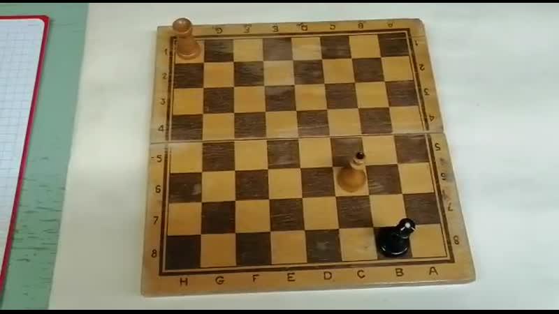 Решение задач Шах и мат Черному Королю в два хода