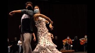 ESTAMPAS FLAMENCAS. ENSAYOS. Ballet Nacional de España.