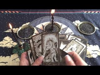 Ритуал снятие порчи паутинной и паучьей