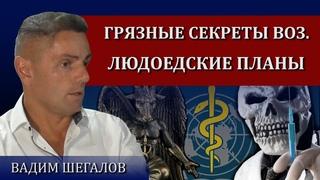 Волк в овечьей шкуре / Вадим Шегалов