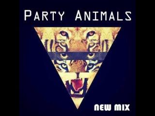 Key D - Animals Party