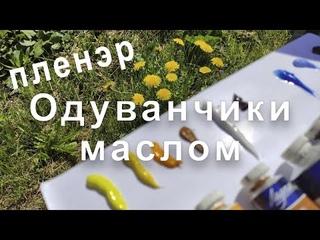 """Мастер-класс """"Одуванчики маслом"""". На пленэре с Татьяной Букреевой. Dandelion oil"""