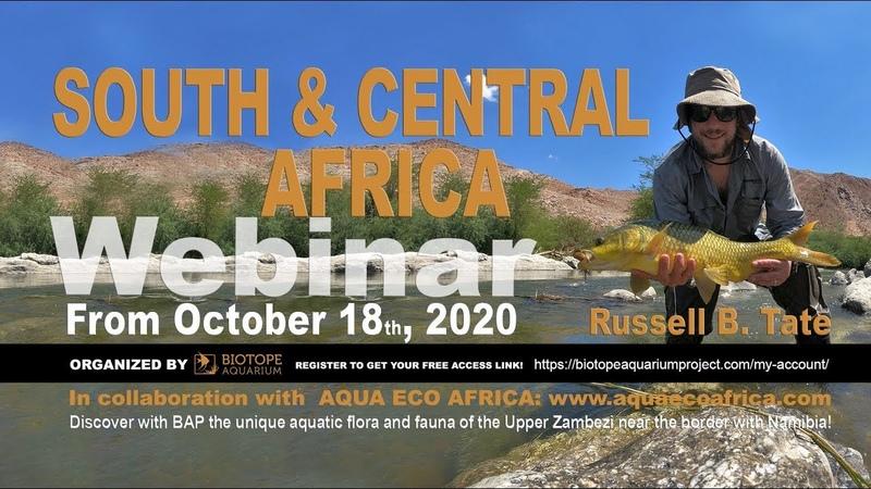 Южная и Центральная Африка. Вебинар Рассела Брайана Тейта. Часть 2 (18.10.2020) (Eng)