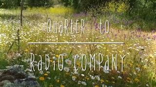 Quarter To - Radio Company cover (lyrics)