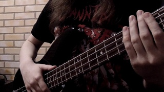 Children of Bodom — Downfall [Bass Cover] Rest in peace, Alexi Laiho