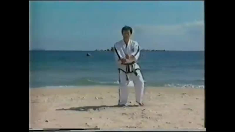2. Tae Kwon-Do - The present generation art of sef-defence (7-4 gup)